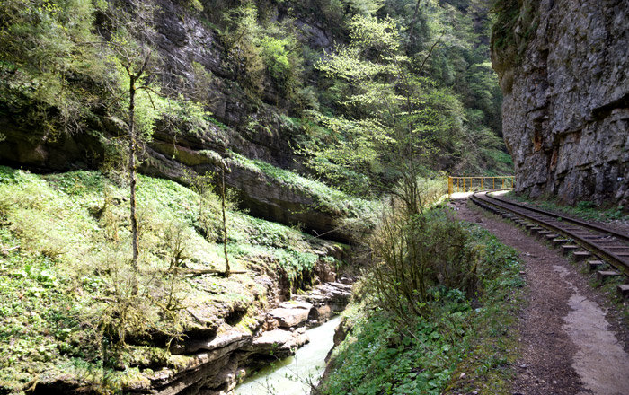 Гуамское ущелье (Лагонаки)