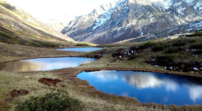 Долина Дзитаку (Кавказский заповедник)